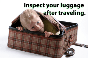 inspect-luggage-300x200